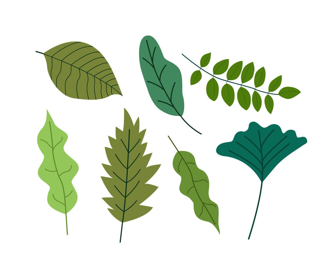 Leeyes clipart clipart free stock Flat Green Leaves Clipart Vector Vector Art & Graphics | freevector.com clipart free stock