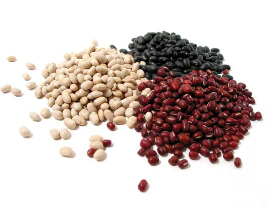 Legume examples clip art royalty free library Protein: Muscle builder or bust | Guiding Stars clip art royalty free library