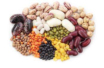 Legume examples banner transparent download Dry Beans and Peas (Legumes) banner transparent download