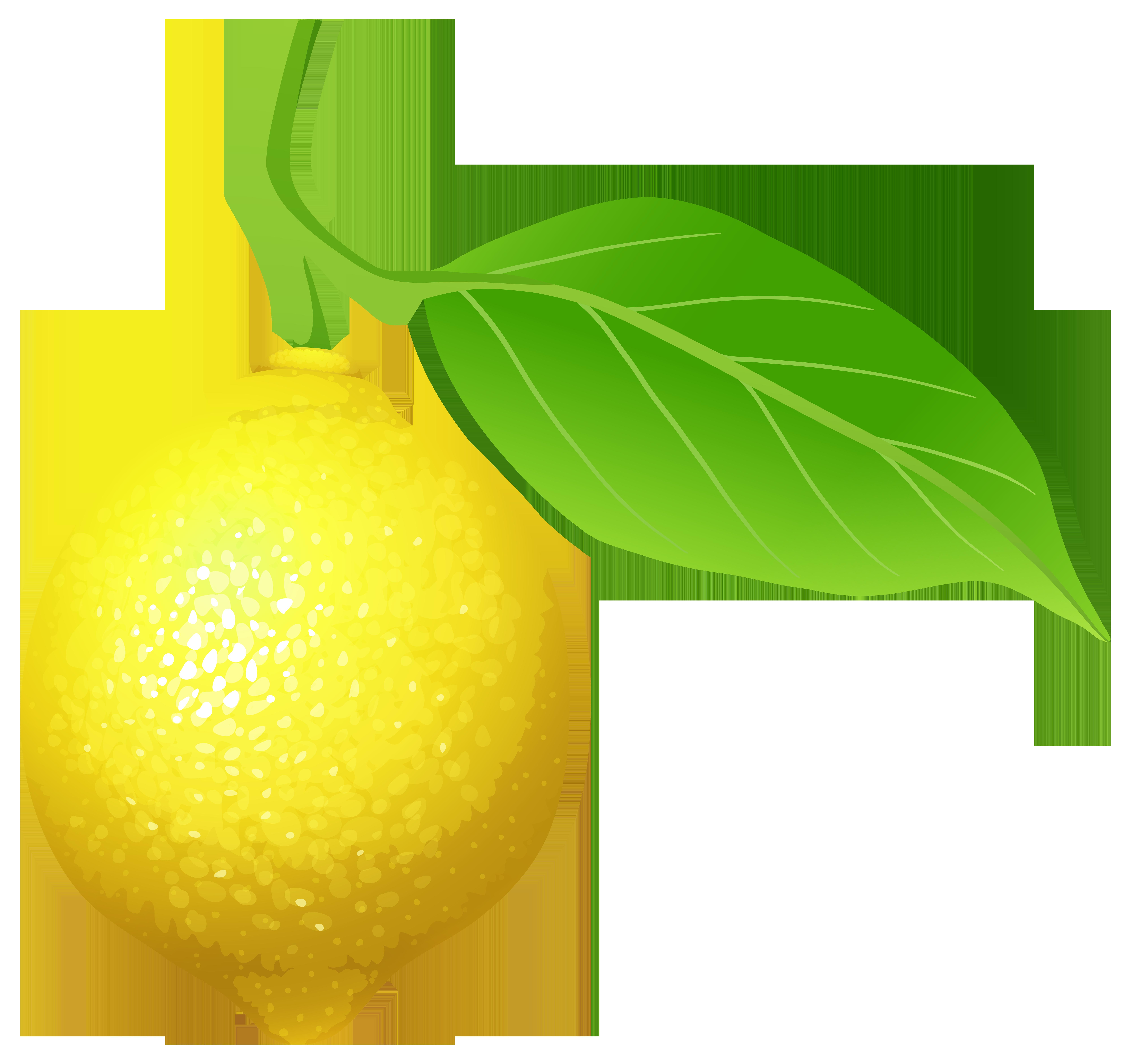 Lemon car clipart svg transparent Lemon PNG Clip Art - Best WEB Clipart svg transparent