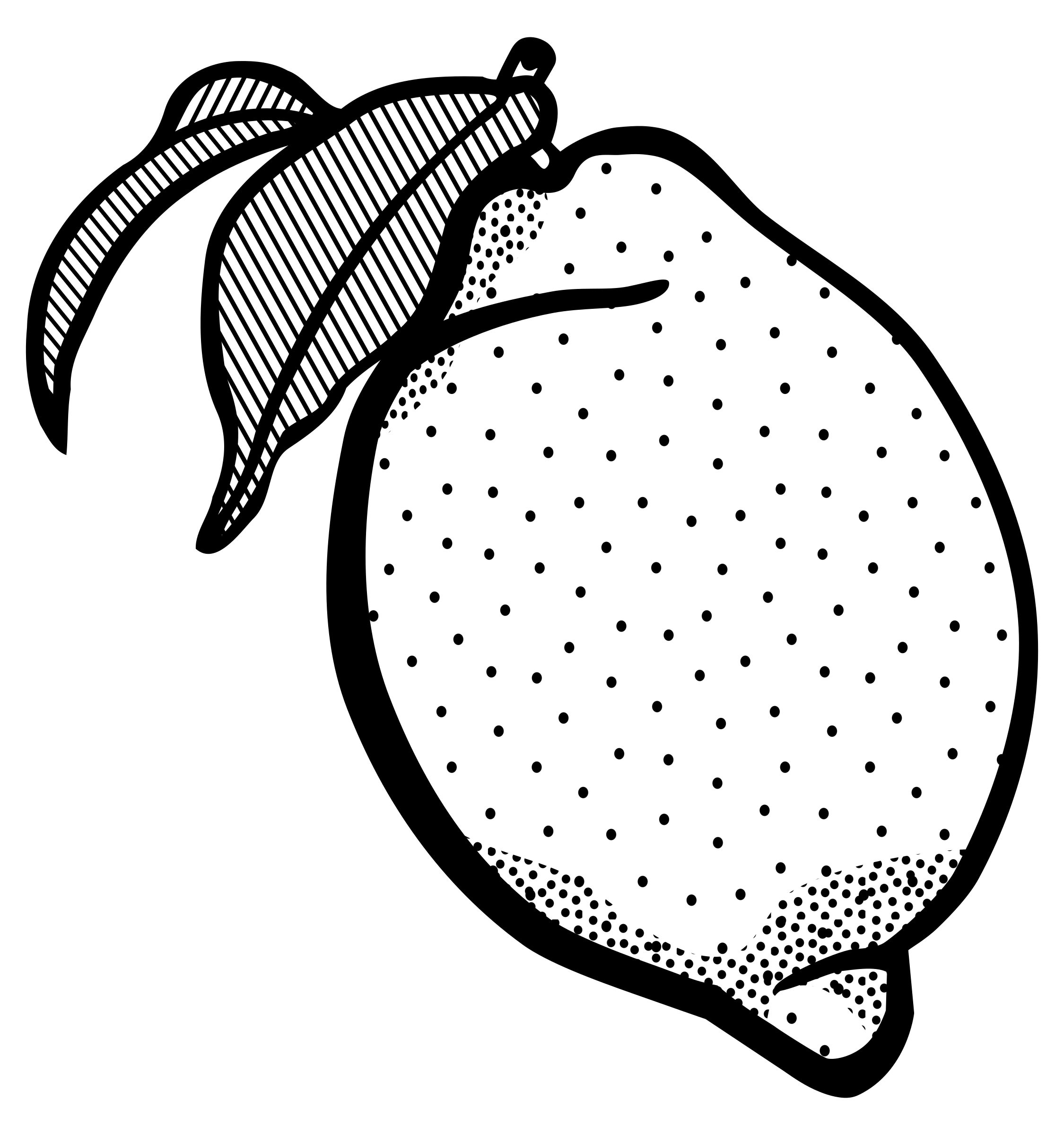Lemon with leaf clipart black and white black and white Free Lemon Outline Cliparts, Download Free Clip Art, Free Clip Art ... black and white