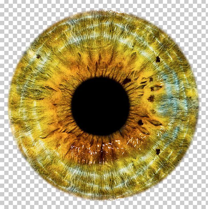 Lens eye clipart image transparent library Eye Lens PNG, Clipart, Circle, Clip Art, Closeup, Color, Contact ... image transparent library