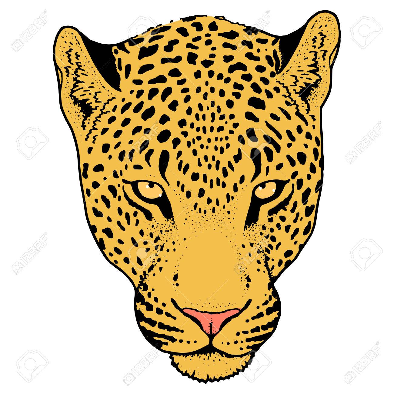 Leopard face clipart royalty free library Leopard Face Cliparts 16 - 1300 X 1300 - Making-The-Web.com royalty free library