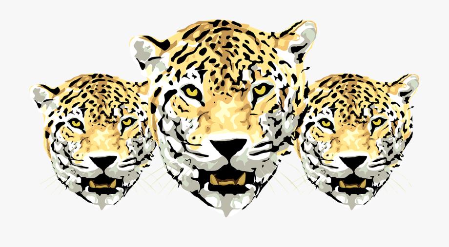 Leopard face clipart banner transparent Jaguar Amur Cheetah Clip Art Three Tigers Ⓒ - Face Jaguar Animal ... banner transparent
