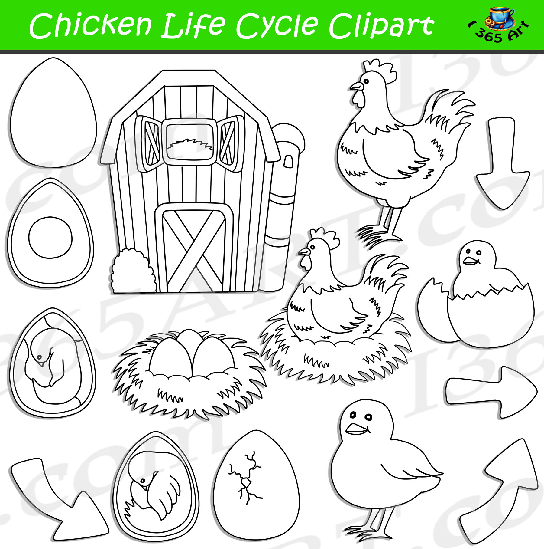 Life is better with chickens around clipart black and white clip art royalty free download Chicken Life Cycle Clipart Bundle clip art royalty free download