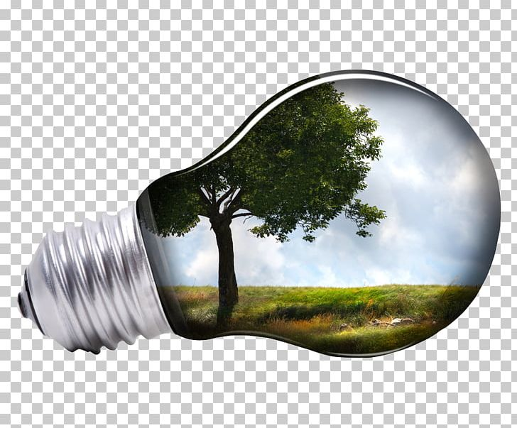 Light bulb grid clipart png free stock Renewable Energy Solar Energy Solar Power Business PNG, Clipart ... png free stock