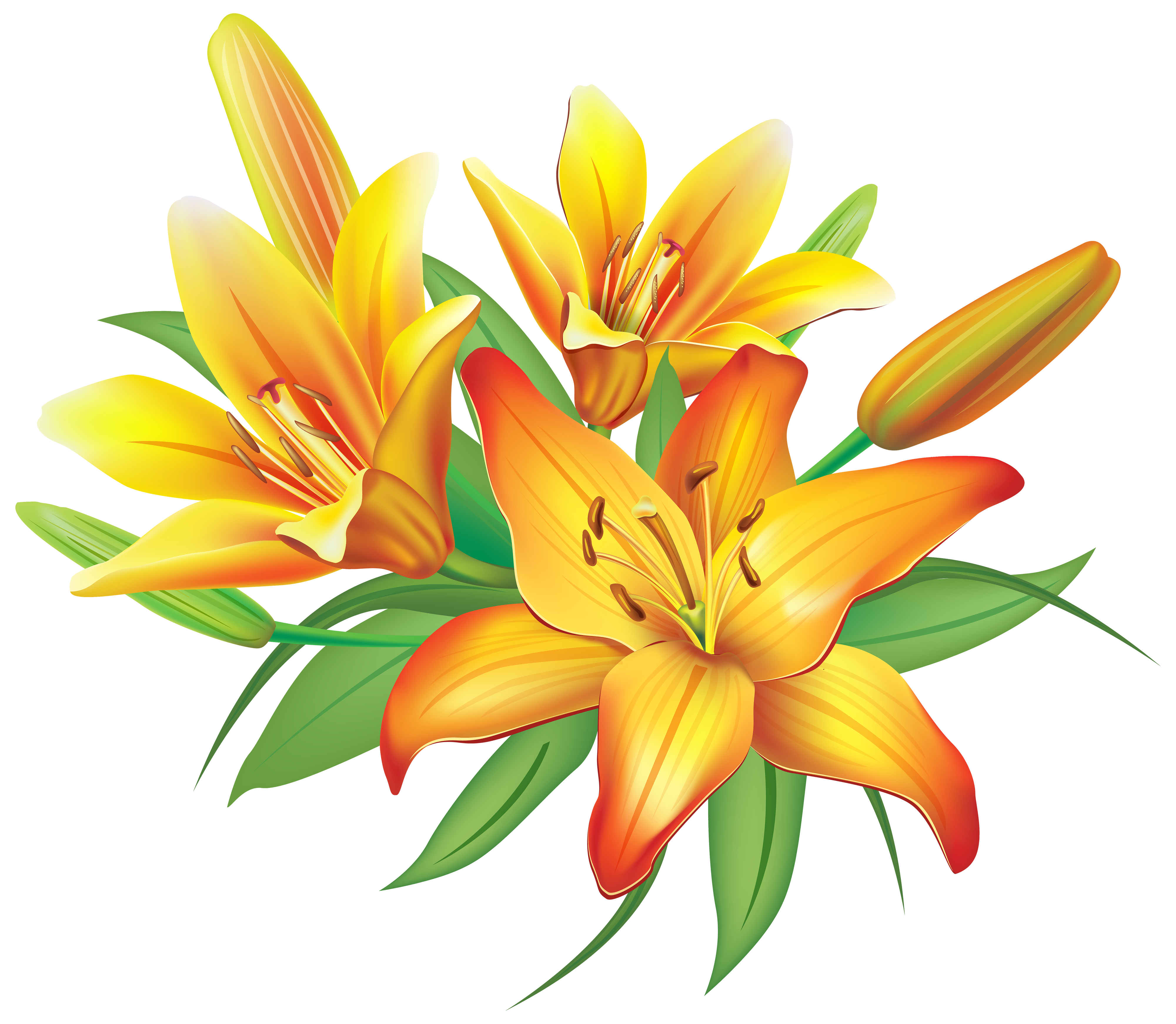 Lilies clipart clip library library Yellow Lilies Flowers Decoration PNG Clipart Image ... clip library library