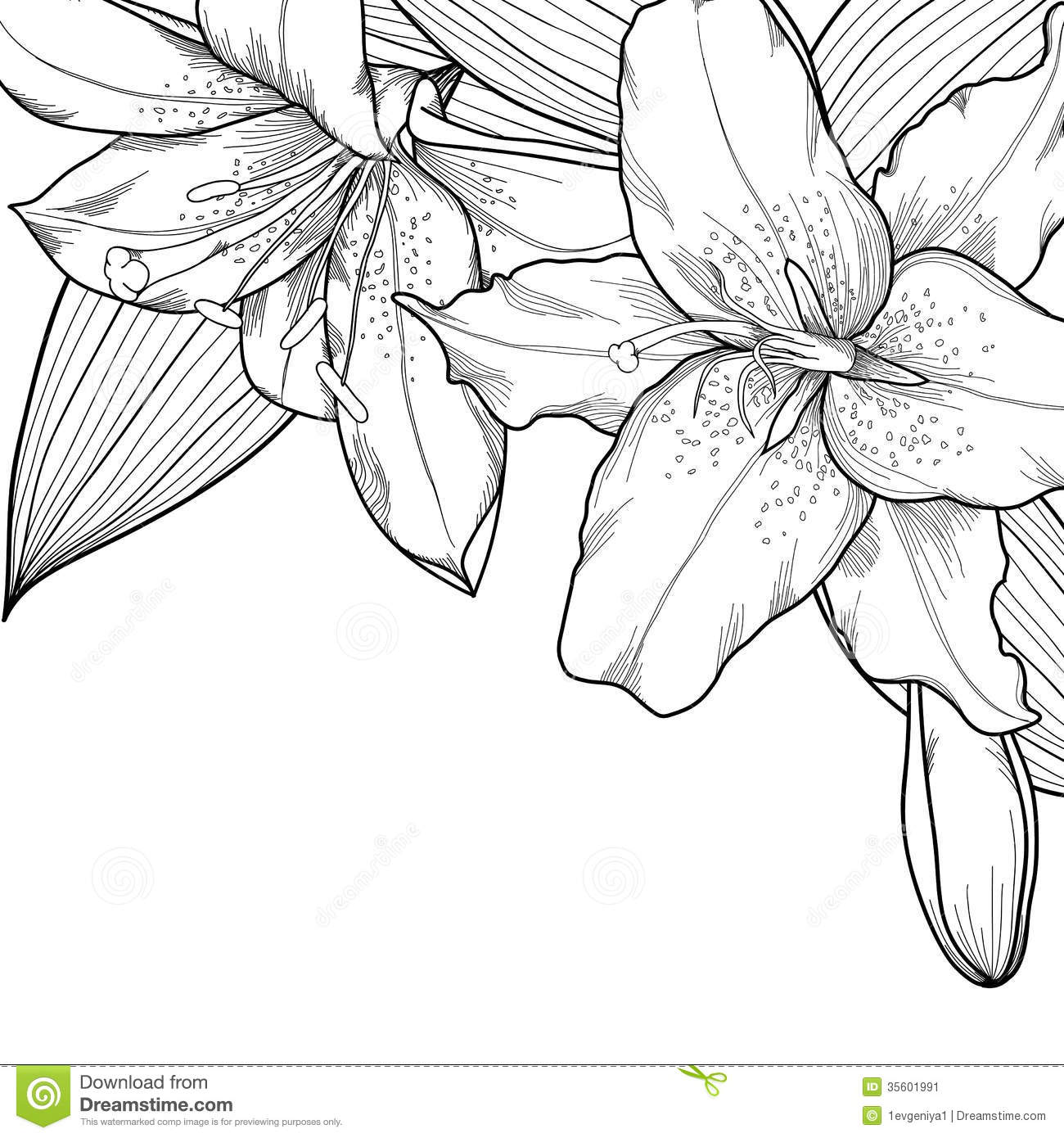 Lilies graphics svg royalty free download Lilies graphics - ClipartFest svg royalty free download