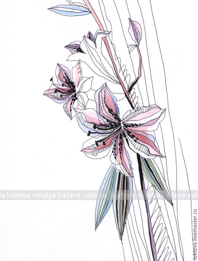 Lilies graphics jpg black and white stock Buy Schedule