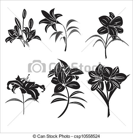 Lilies graphics clip freeuse library Lily Stock Illustrations. 14,848 Lily clip art images and royalty ... clip freeuse library