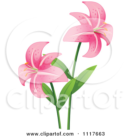 Lilies graphics vector transparent library Royalty-Free (RF) Clipart of Lilies, Illustrations, Vector Graphics #1 vector transparent library