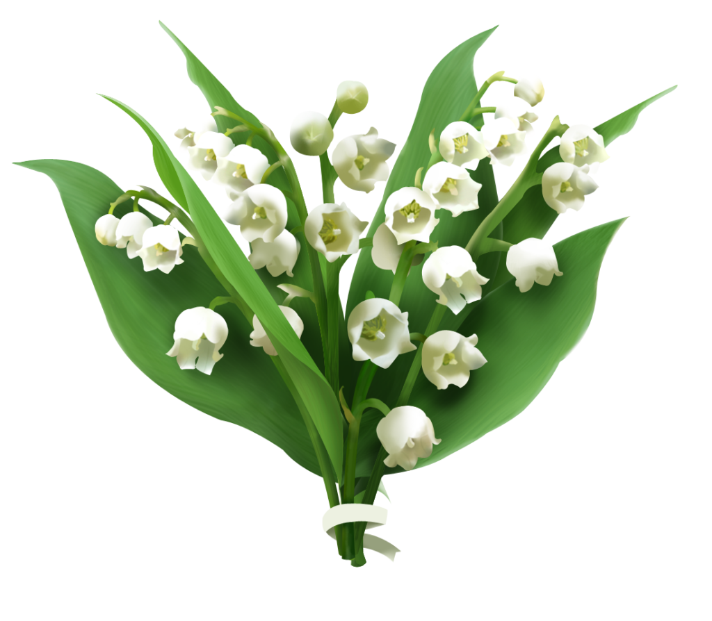 Lilies of the valley clipart graphic free Lily of the valley floral clipart images gallery for free ... graphic free