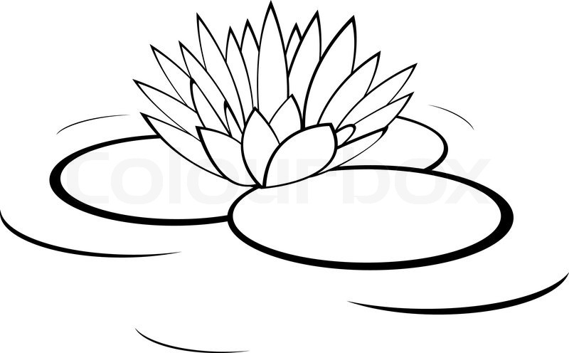 Lilies on the ground clipart black and white clipart black and white Water Lily Clipart Black And White clipart black and white