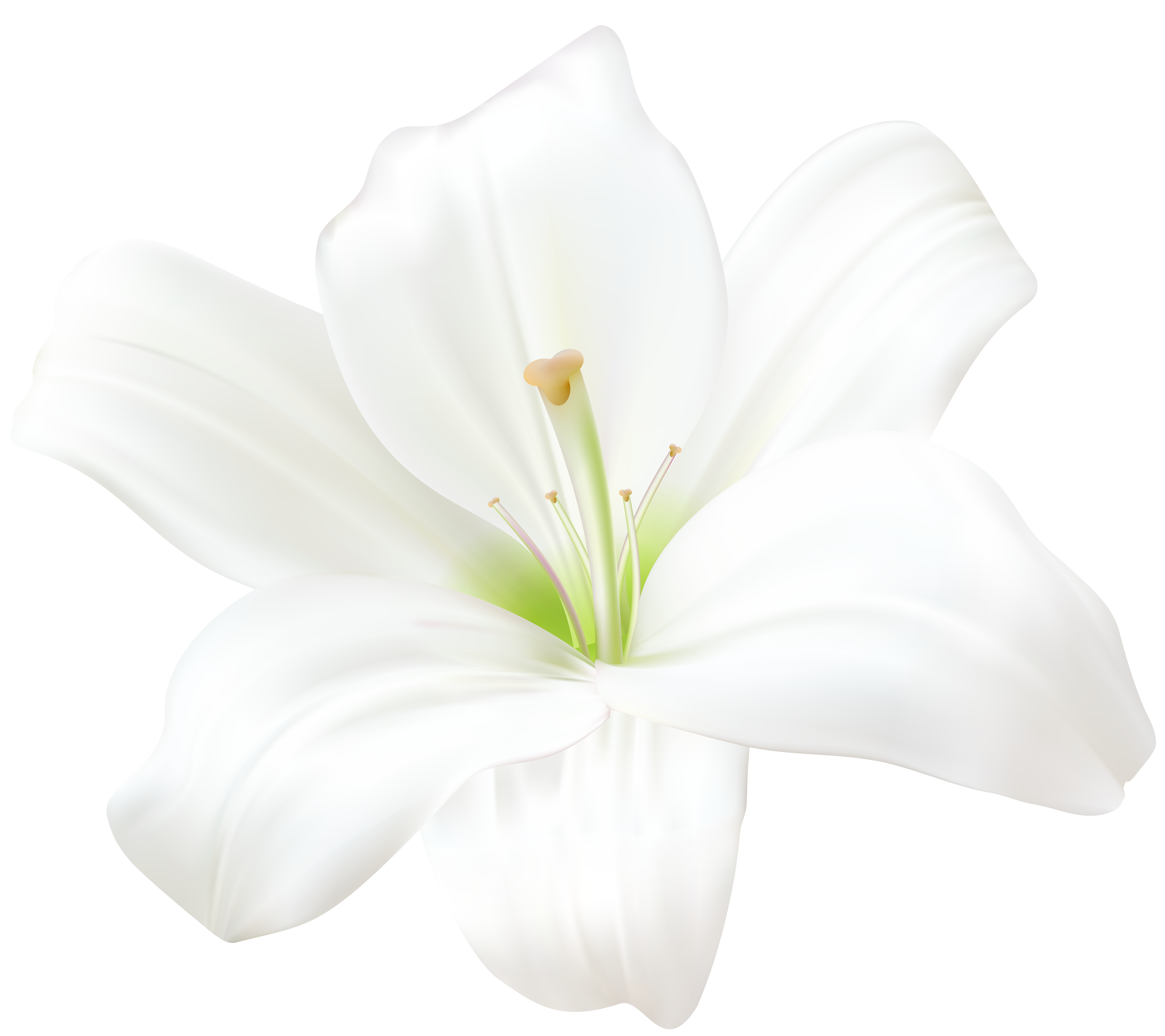 Lilies on the ground clipart black and white graphic freeuse White Lily PNG Clip Art Image   Gallery Yopriceville - High ... graphic freeuse
