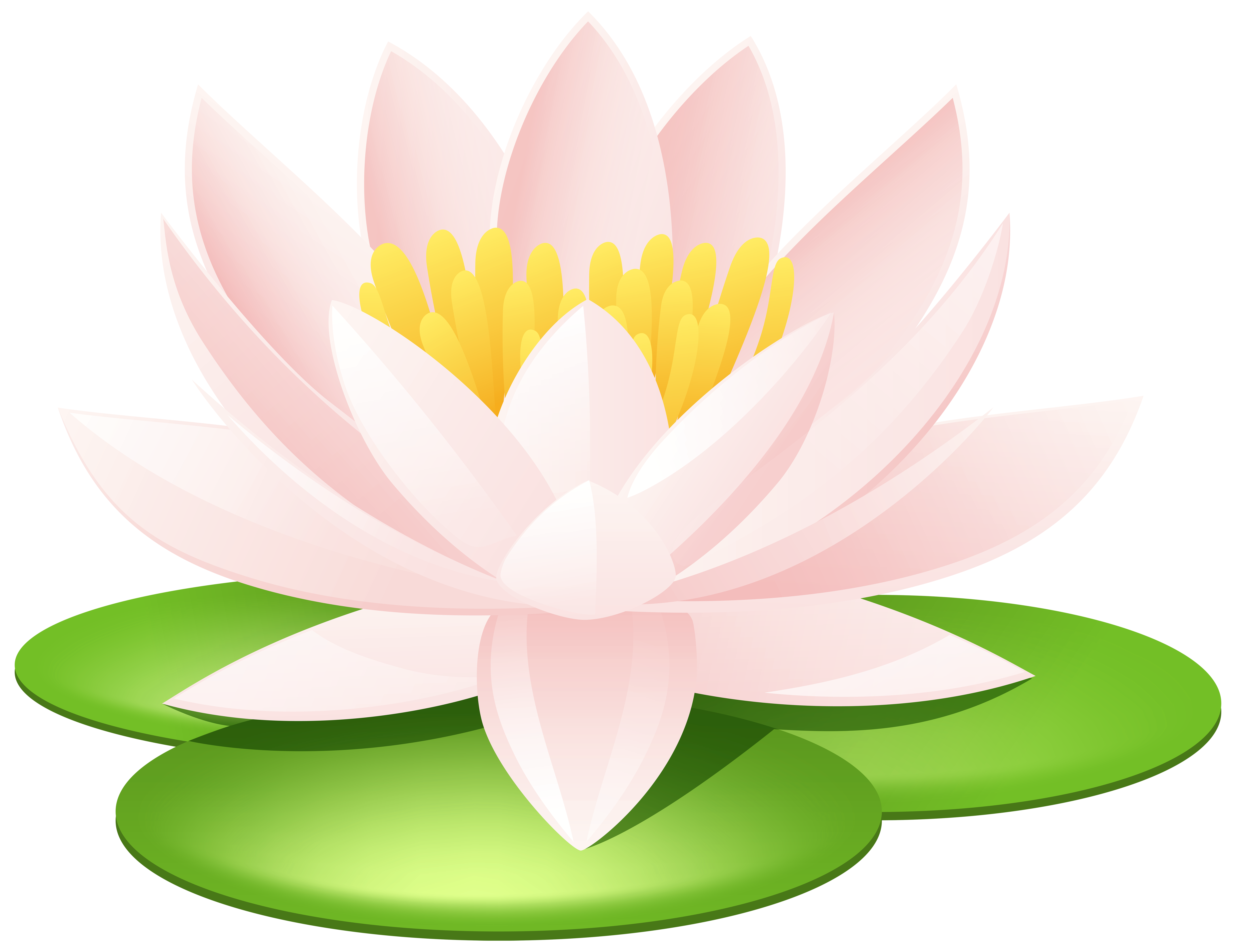 Lily and cross clipart jpg royalty free stock 28+ Collection of Water Lily Clipart Png | High quality, free ... jpg royalty free stock