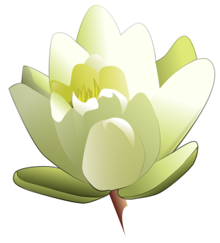 Lily graphics svg library Free Lily Clipart - Public Domain Flower clip art, images and graphics svg library
