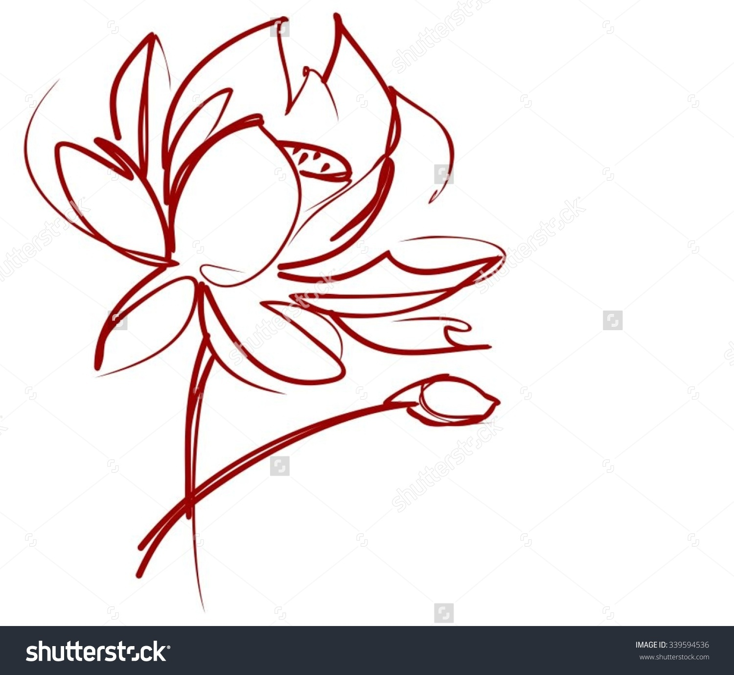 Lily graphics freeuse Water lily graphics - ClipartFest freeuse