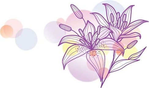 Lily graphics clip transparent Lily Vecotr Illustration | Free Vector Graphics | All Free Web ... clip transparent
