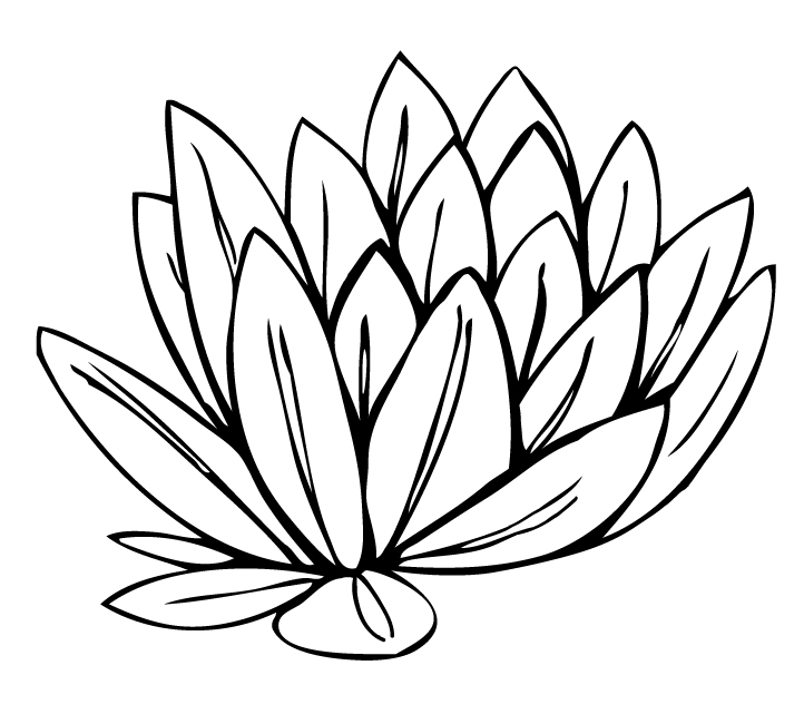 Lily pad flower clipart blach and white clipart library stock Lily Flower Clipart | Free download best Lily Flower Clipart ... clipart library stock
