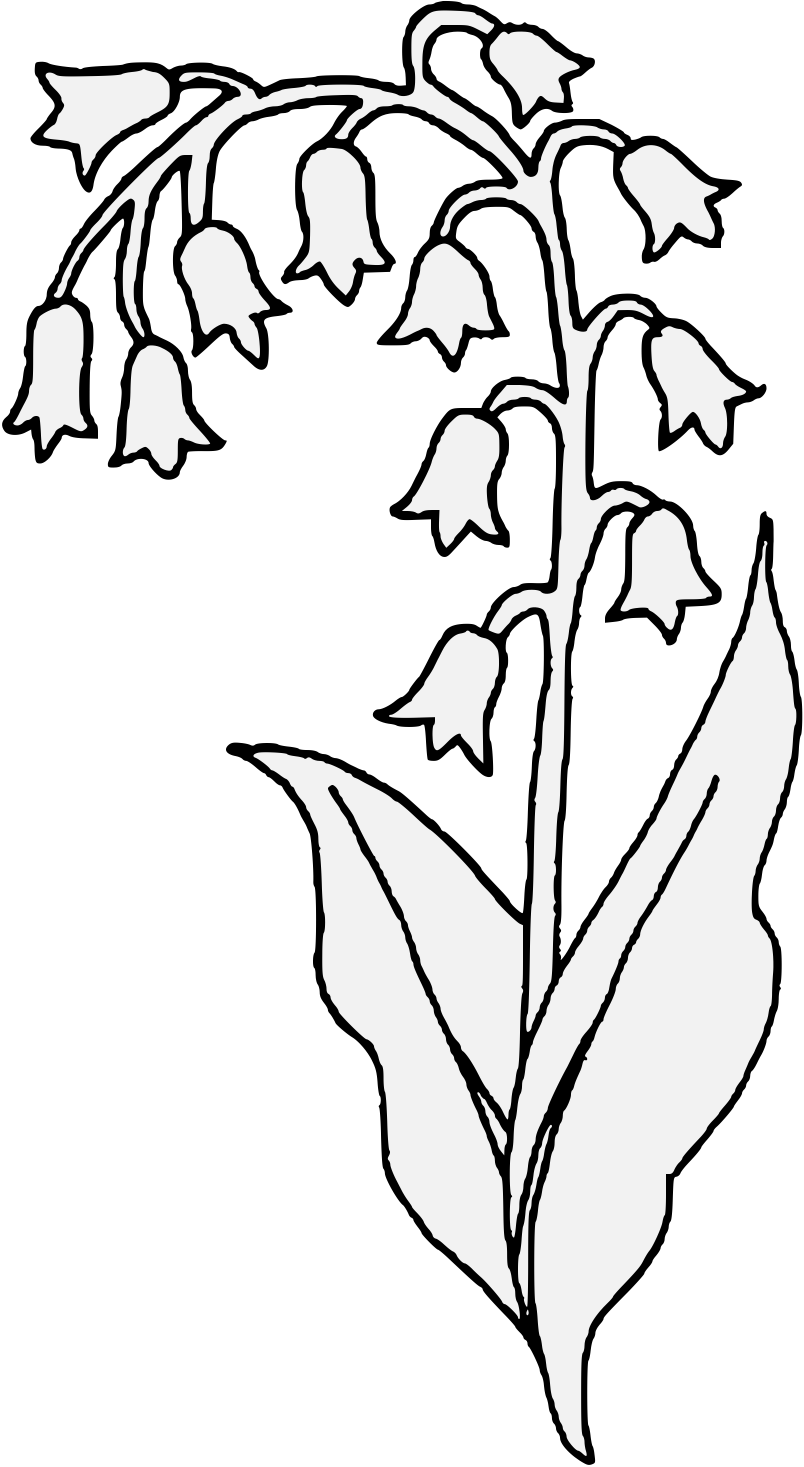 Lily pad flower clipart black and white banner black and white stock Lily Of The Valley Line Drawing at GetDrawings.com | Free for ... banner black and white stock