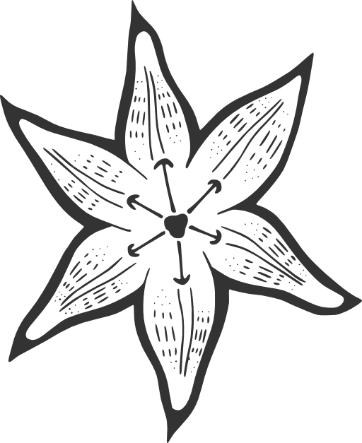 Lily pad flower clipart black and white picture freeuse stock A Lily For Becky Clipart | i2Clipart - Royalty Free Public Domain ... picture freeuse stock