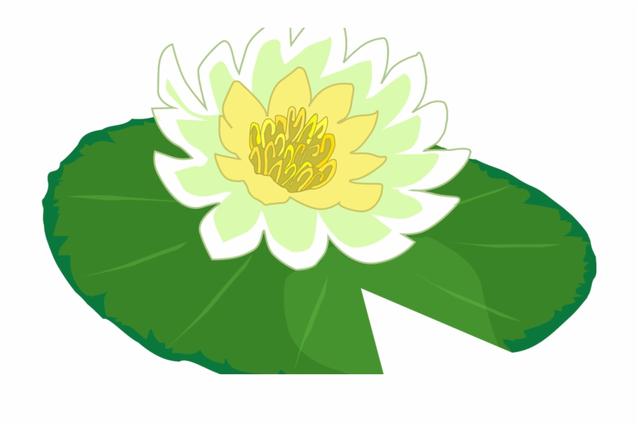 Lily pads clipart banner free White Flower Water Lily Clipart The Cliparts Png Clipartix ... banner free