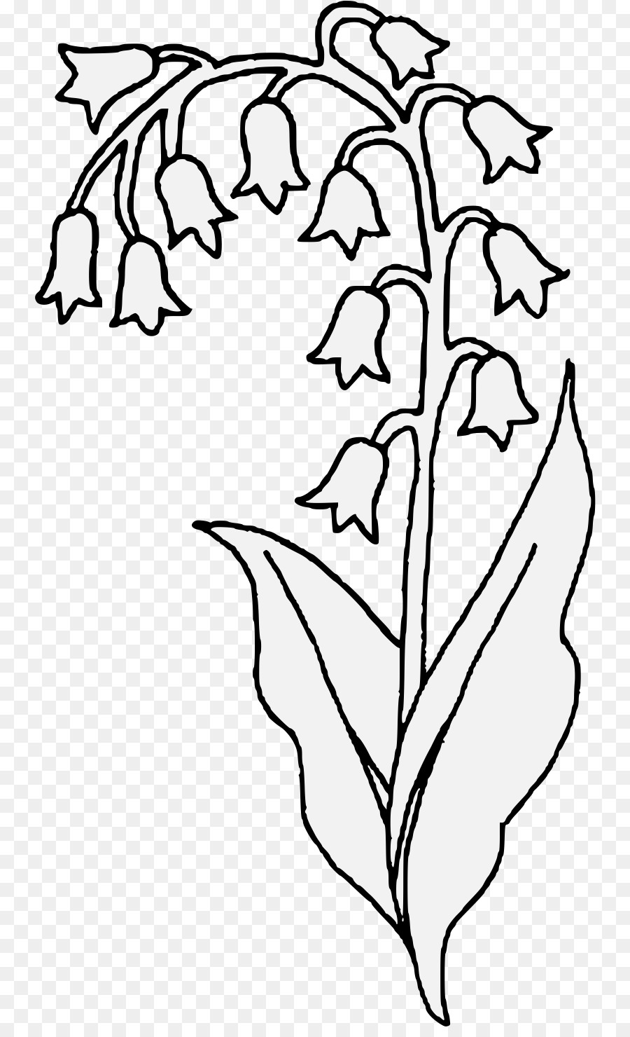 Lily stem flower black and white clipart banner black and white download Black And White Flower png download - 804*1467 - Free ... banner black and white download