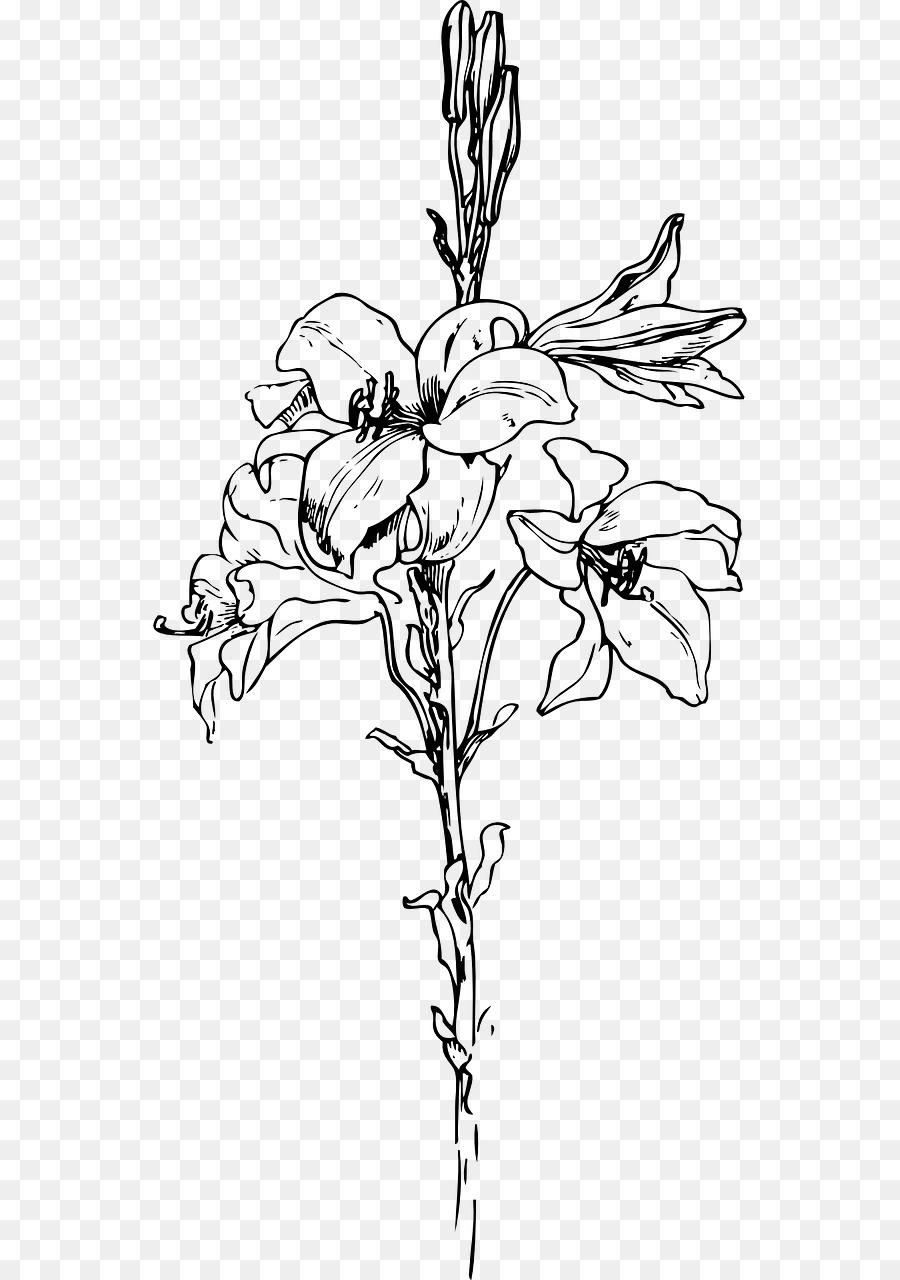 Lily stem flower black and white clipart black and white download Black And White Flower clipart - Lily, Flower, Tattoo ... black and white download