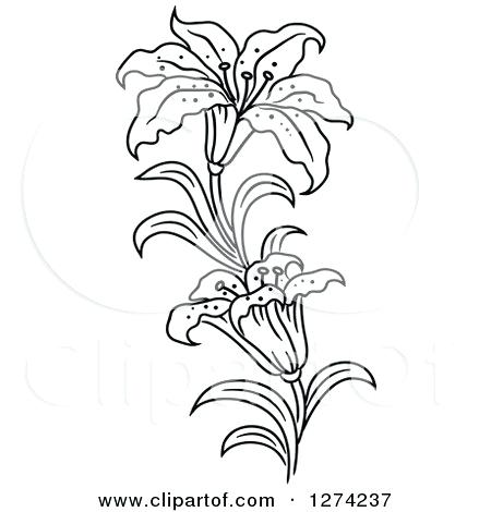Lily stem flower black and white clipart svg stock white lily flowers clipart vector – belline.org svg stock