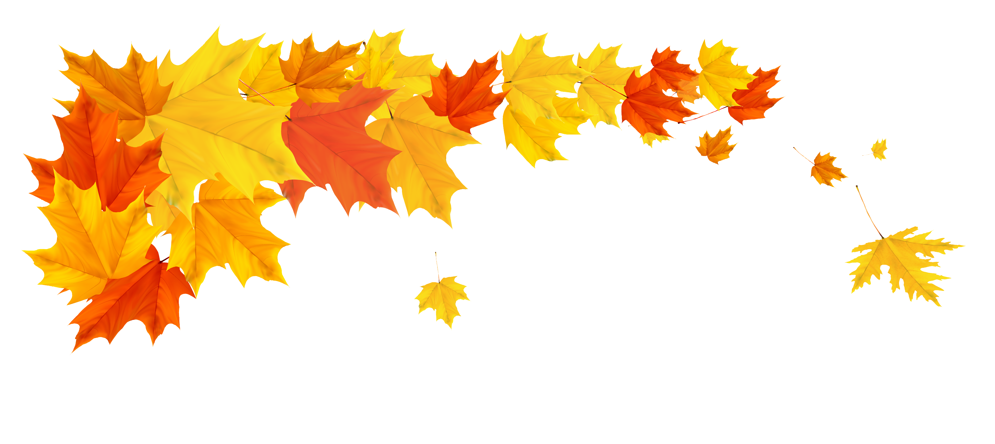 Line break leaves maple clipart page separator clipart transparent library Divider clipart autumn, Divider autumn Transparent FREE for ... clipart transparent library