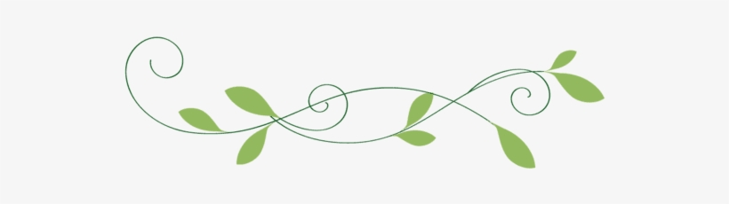 Line break leaves maple clipart page separator image freeuse stock Field Daisy Page Break Hi 1535346128 - Leaf Divider Png ... image freeuse stock