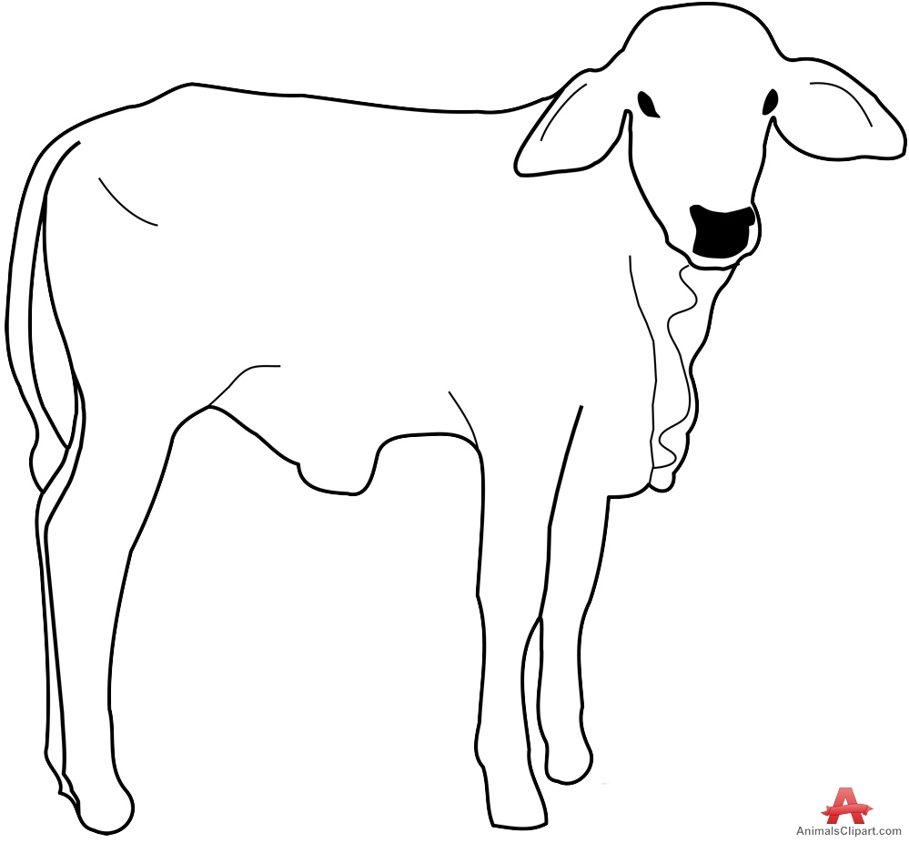 Line drawing clipart free download graphic royalty free download Out Line Drawing Of Animals Cow Calf Outline Drawing Clipart ... graphic royalty free download