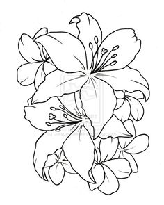 Line drawings of flowers free download vector library library Line drawings of flowers free download - ClipartFest vector library library