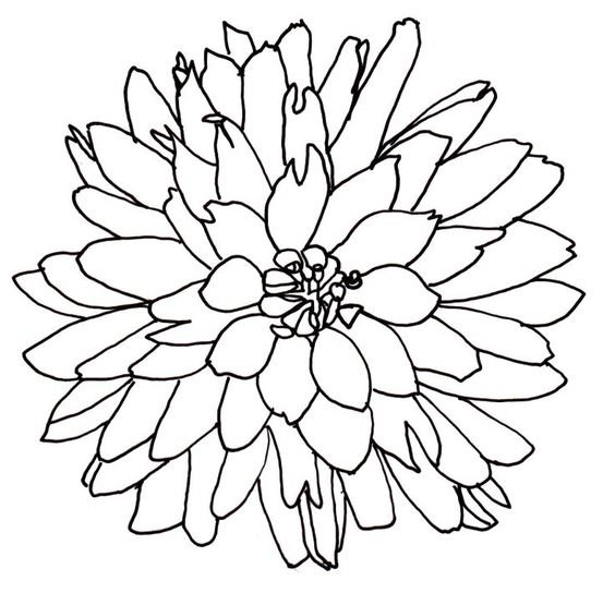 Line drawings of flowers free download banner black and white download Line Drawing Of A Flower | Free Download Clip Art | Free Clip Art ... banner black and white download