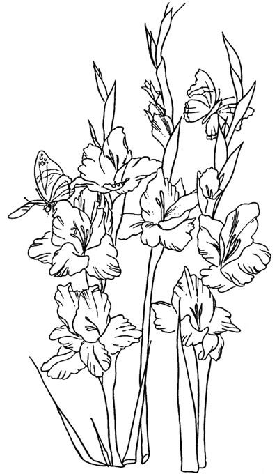Line images of flowers vector free library Top 25 ideas about Flower Line Drawings on Pinterest | Draw ... vector free library