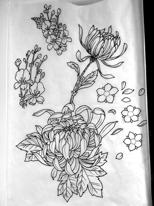 Line images of flowers freeuse library Top 25 ideas about Flower Line Drawings on Pinterest | Draw ... freeuse library