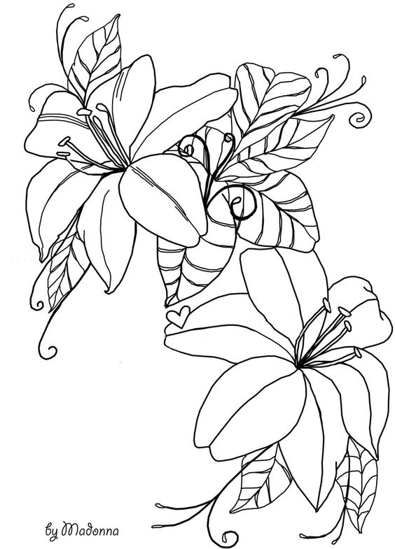 Line images of flowers graphic black and white flowers line drawing stock by madonnakp89.deviantart.com on ... graphic black and white