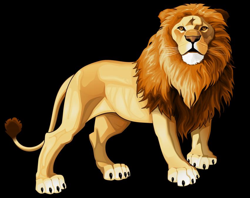 Lion background clipart svg freeuse Lions clipart transparent background, Lions transparent ... svg freeuse