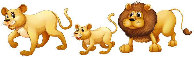 Lion walking clipart png royalty free library Lion Clip Art Free Vector Art - (852 Free Downloads) png royalty free library
