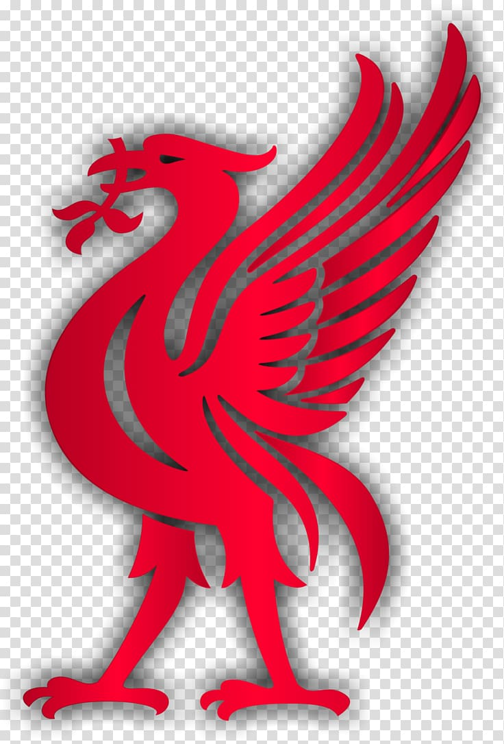 Liverpool logo clipart 512x512 vector free stock Red bird illustration, Liverpool F.C. Liver bird Premier League ... vector free stock