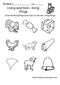 Clipart images of living and nonliving things free stock living and nonliving things worksheets for first grade - Google ... free stock