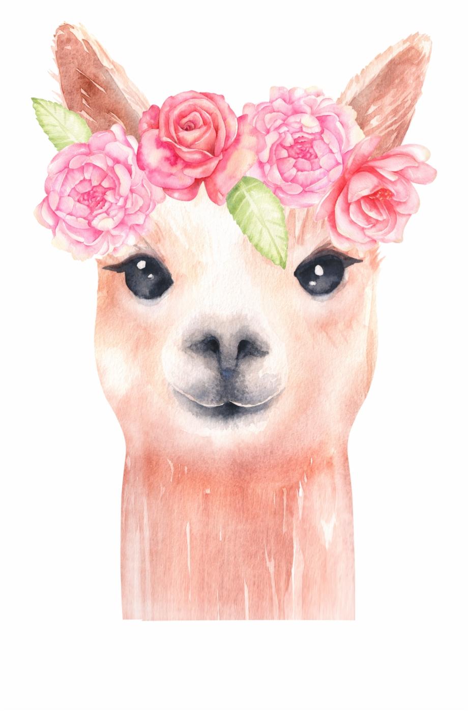 Llama clipart png vector royalty free stock Llama Graphics Alpaca And Flower Clip Art - Llama With Flower Crown ... vector royalty free stock