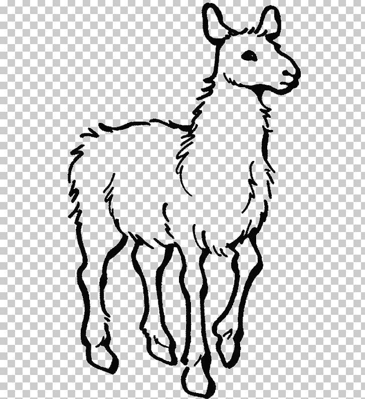 Llama llama book clipart black and white svg stock Alpaca Colouring Pages Llama Llama Home With Mama Coloring Book PNG ... svg stock