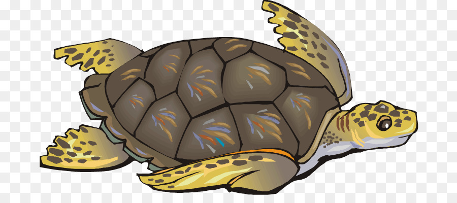 Loggerhead turtle clipart clip art black and white download Sea Turtle Background png download - 750*388 - Free Transparent ... clip art black and white download