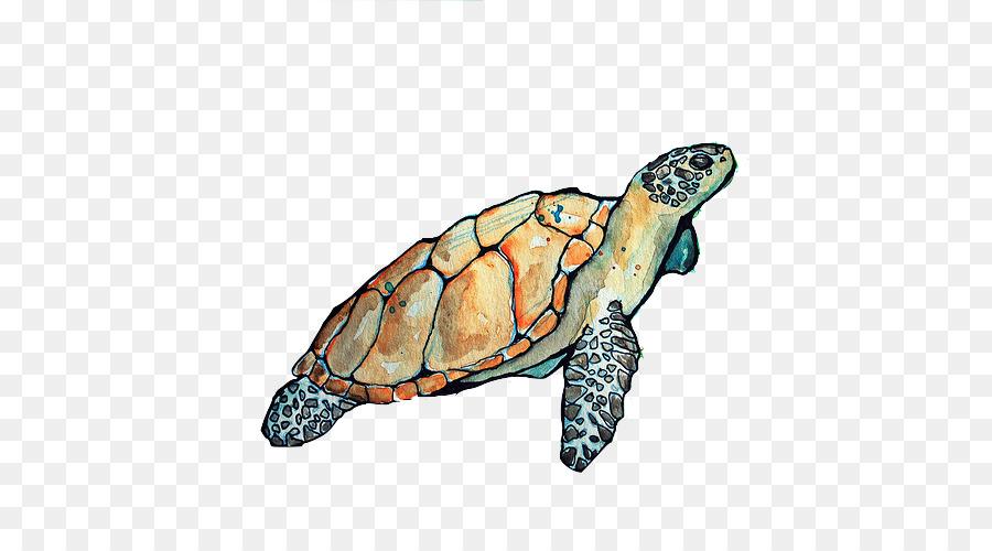 Loggerhead turtle clipart download Sea Turtle Background clipart - Turtle, Illustration, transparent ... download