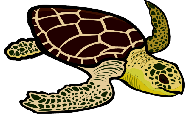 Loggerhead turtle clipart vector library library Loggerhead sea turtle clipart – Gclipart.com vector library library