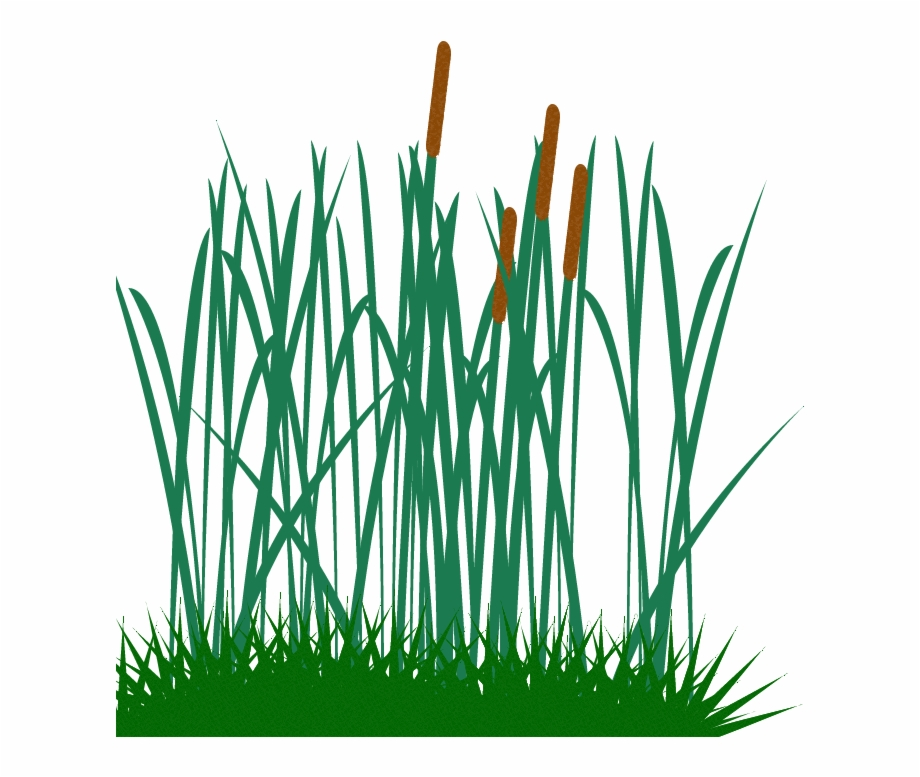 Pictures of tall grass with flowers clipart black and white download Tall Grass Clip - Long Grass Vector Png Free PNG Images & Clipart ... black and white download