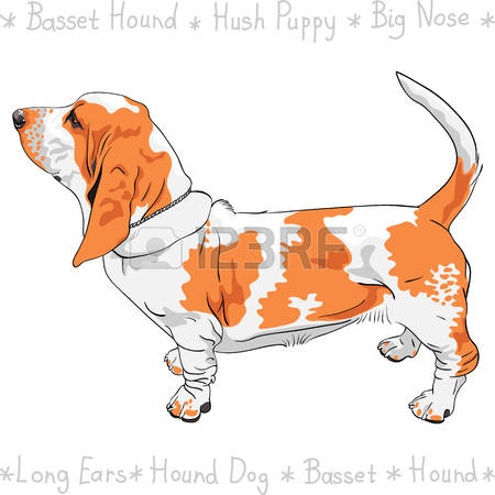 Long tail dog clipart free vector black and white stock 32,696 White Tail Stock Vector Illustration And Royalty Free White ... vector black and white stock