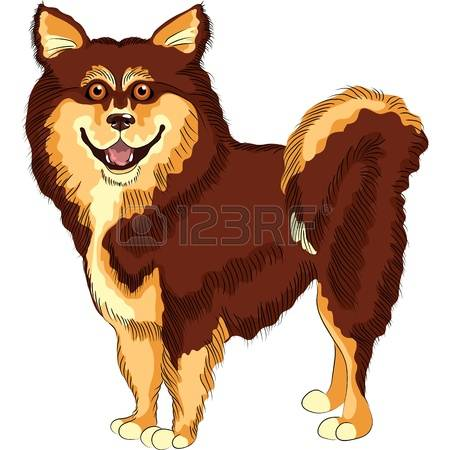 Long tail dog clipart free clip royalty free library 2,702 Long Tail Stock Illustrations, Cliparts And Royalty Free ... clip royalty free library