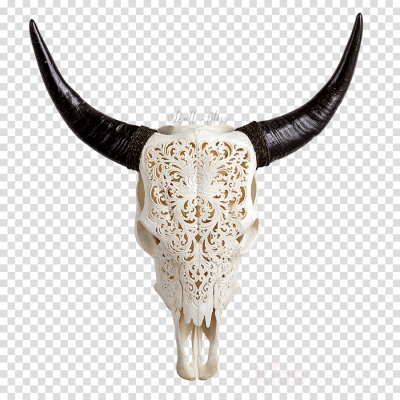 Longhorn skull with star of life clipart vector library stock Skull PNG - DLPNG.com vector library stock